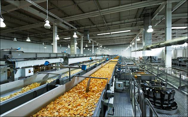 Automated Food Processing
